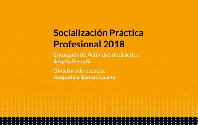 SOCIALIZACIÓN PRÁCTICA PROFESIONAL 2018